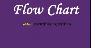 FlowChart Pozifit mi Negatif mi Videosu