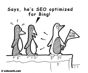 bing google seo optimizasyonu kim için